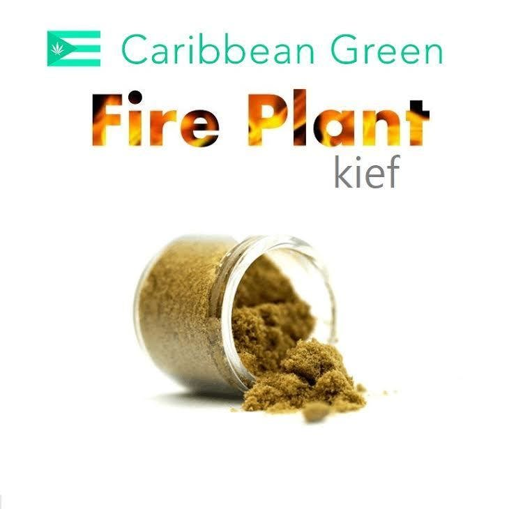 concentrate-fire-plant-kief-35-25-thc