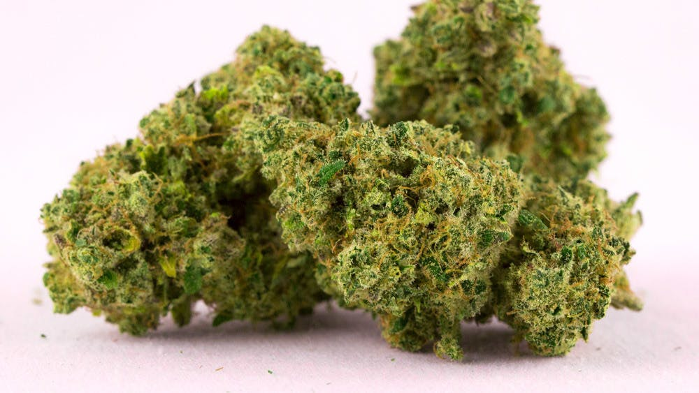 marijuana-dispensaries-29-franklin-st-needham-heights-four-lights