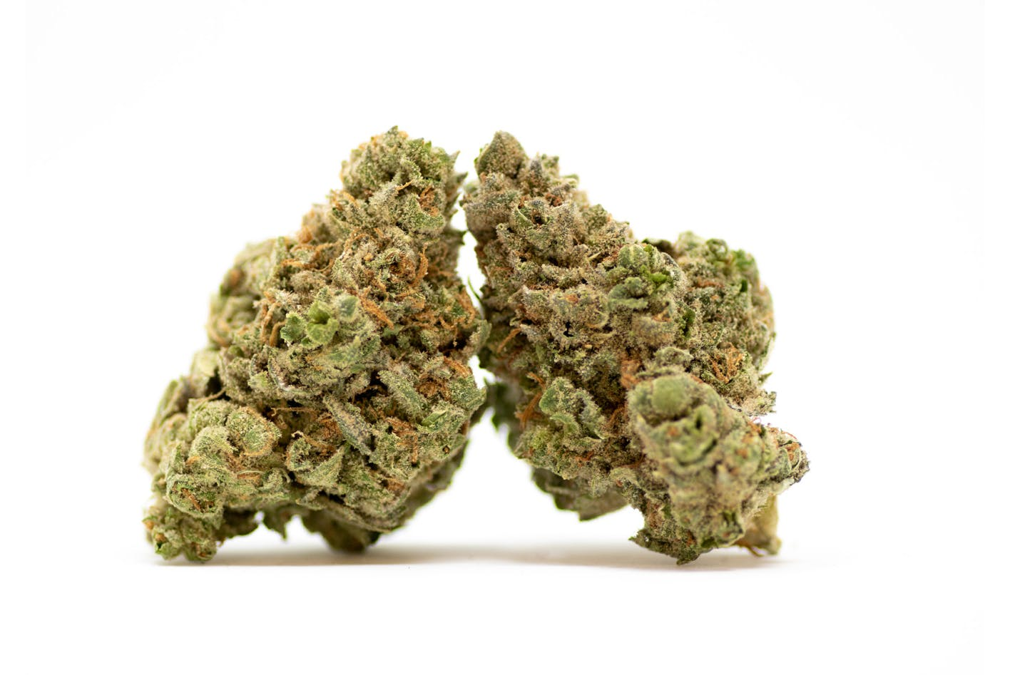 marijuana-dispensaries-29-franklin-st-needham-heights-g-s-o-g-x-m-o-b