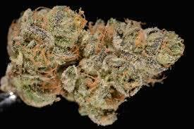 marijuana-dispensaries-615-e-lincoln-ave-las-vegas-girl-scout-cookies-14ths-only