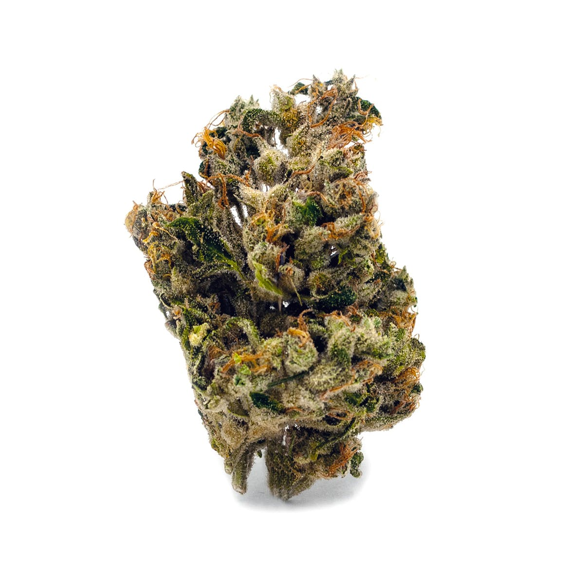 marijuana-dispensaries-greenwave-maryland-in-solomons-jack-herer-238