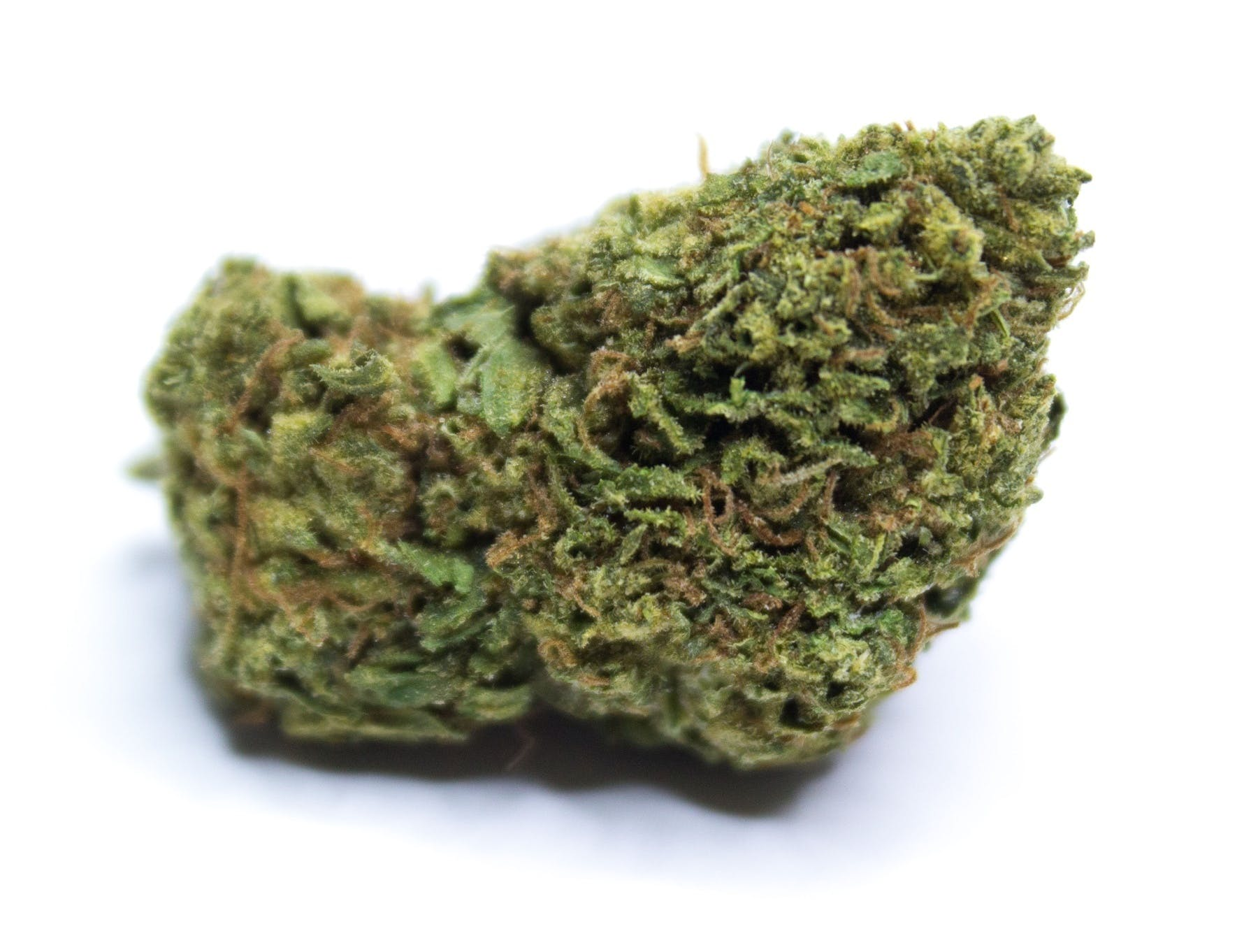 marijuana-dispensaries-ncc-meds-in-los-angeles-king-kong