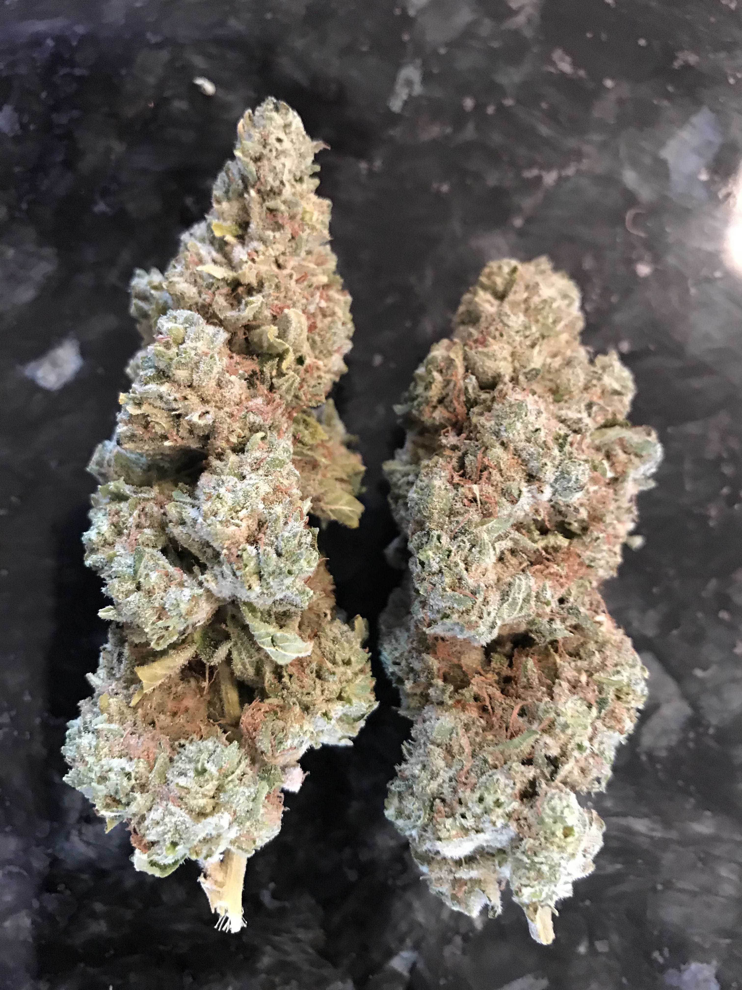 indica-mendo-ghost-breath