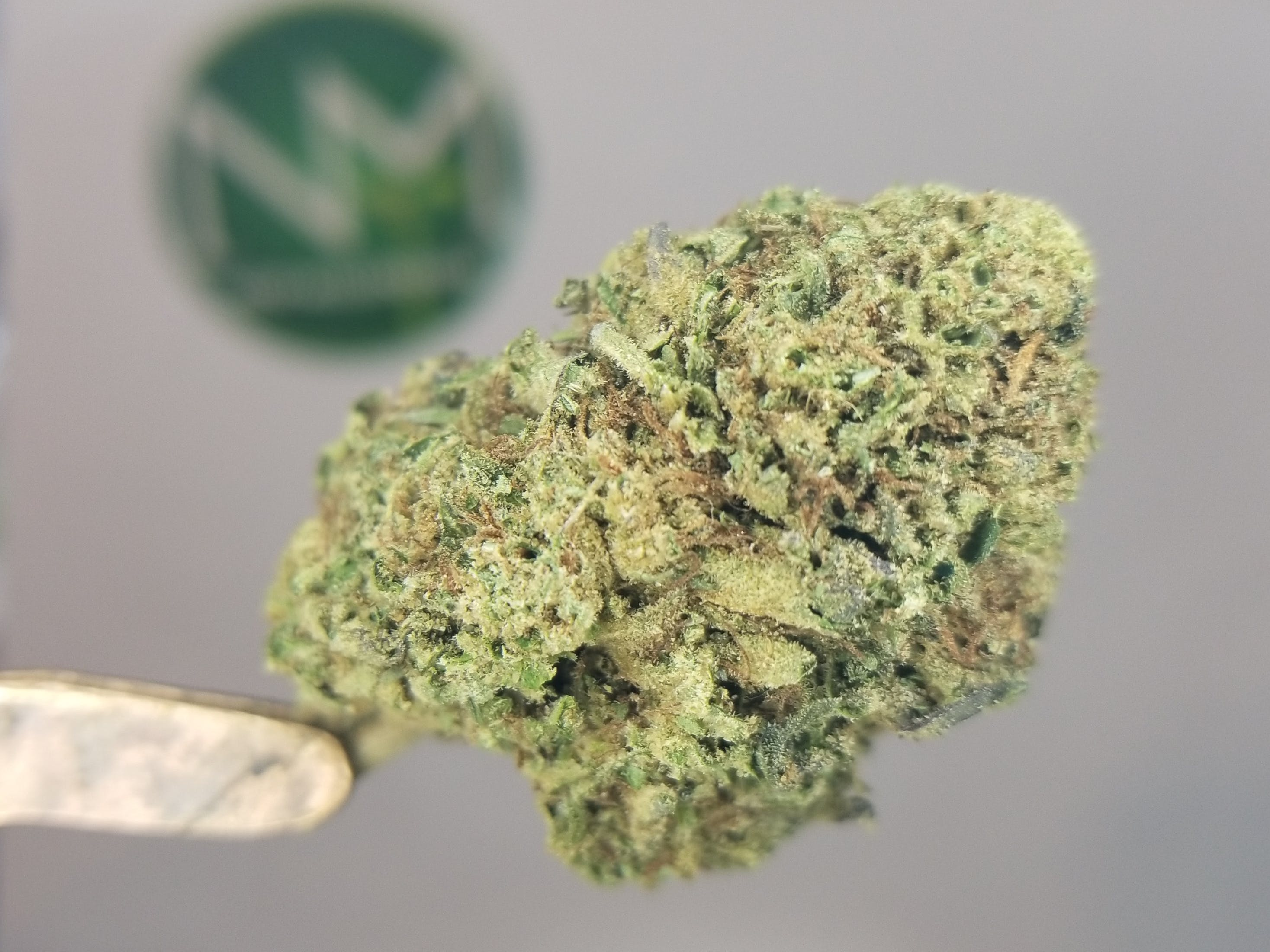 marijuana-dispensaries-2893-oak-street-eugene-millennium-la-affie