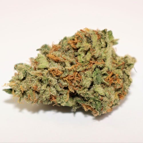marijuana-dispensaries-ncc-meds-in-los-angeles-nightmare-og
