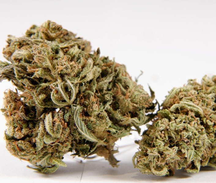 sativa-premiums-sweet-tooth
