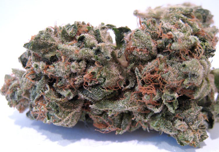 hybrid-private-reserve-girl-scout-cookies-5g50-2oz430-qp840
