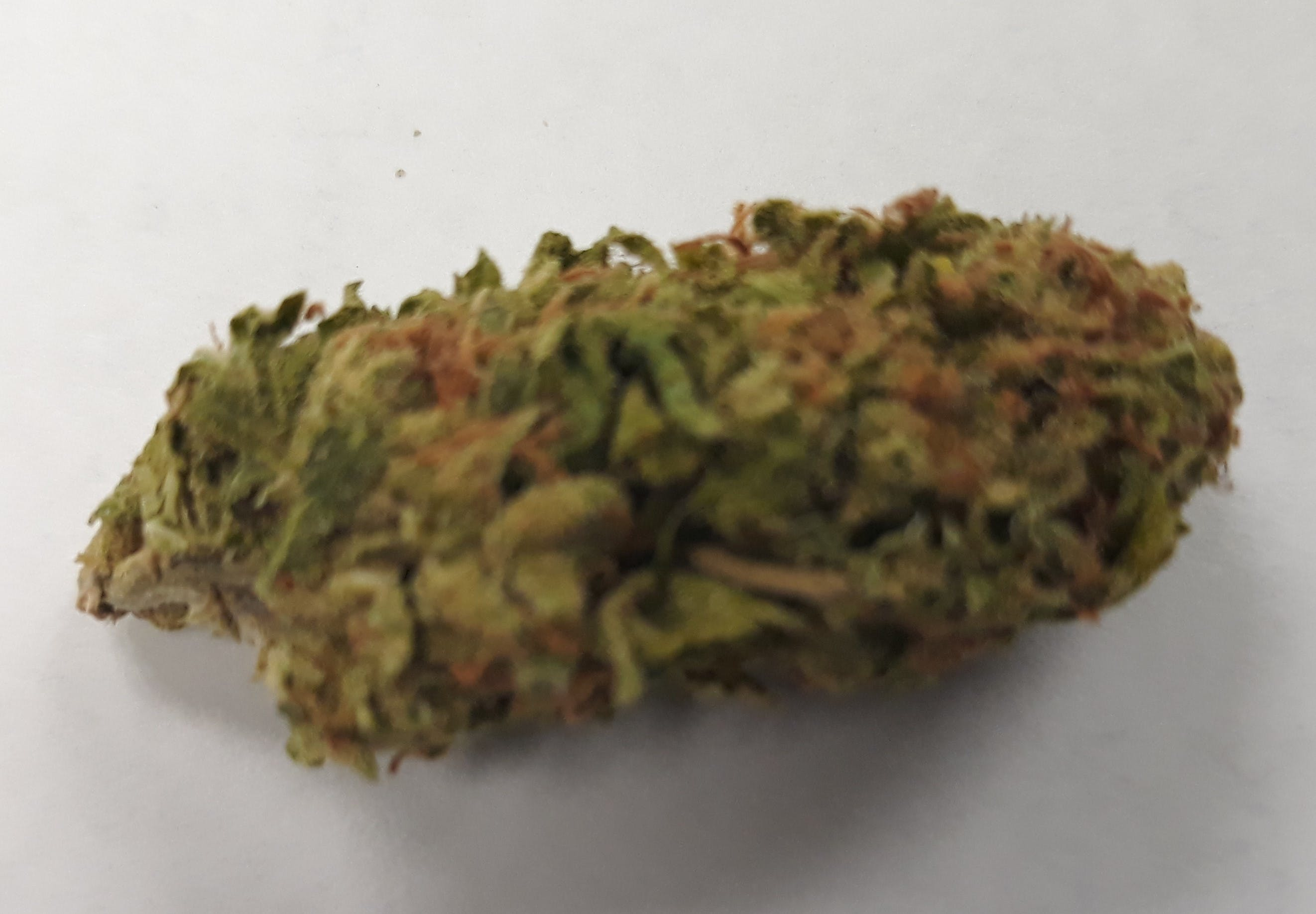 marijuana-dispensaries-green-health-clinic-and-dispensary-in-edmond-sour-jack