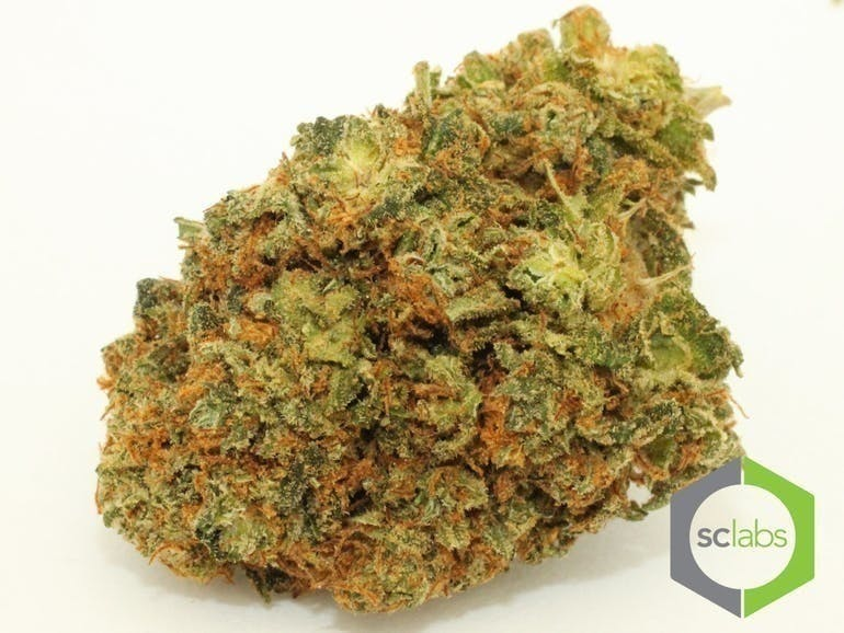 marijuana-dispensaries-1026-w-pacific-coast-wilmington-top-shelf-cherry-kola-og-5-for-35