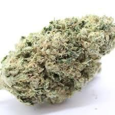 indica-top-shelf-white-yeti-og-5g45-2oz430-qp840