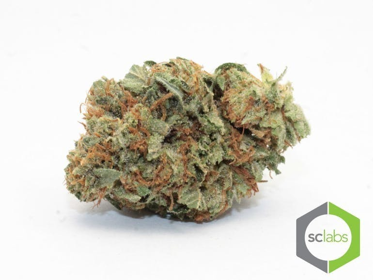 marijuana-dispensaries-1026-w-pacific-coast-wilmington-topshelf-ace-og-5-for-35