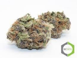 marijuana-dispensaries-1026-w-pacific-coast-wilmington-topshelf-chocolope-5-for-35