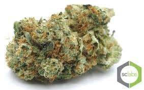 marijuana-dispensaries-1026-w-pacific-coast-wilmington-topshelf-conspiracy-kush-5-for-35