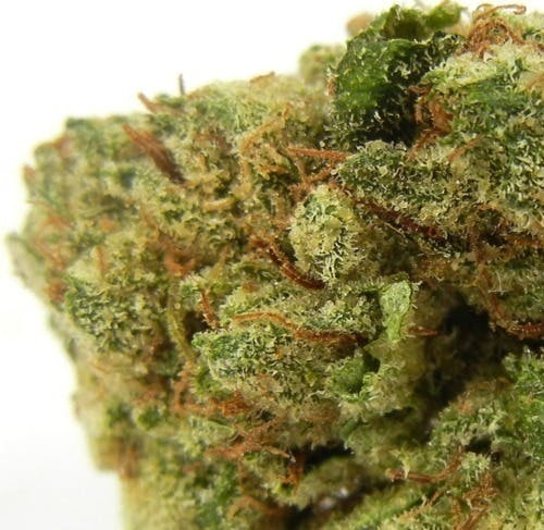 marijuana-dispensaries-green-gears-20-cap-in-los-angeles-topshelf-dank-og-2oz270-qp530