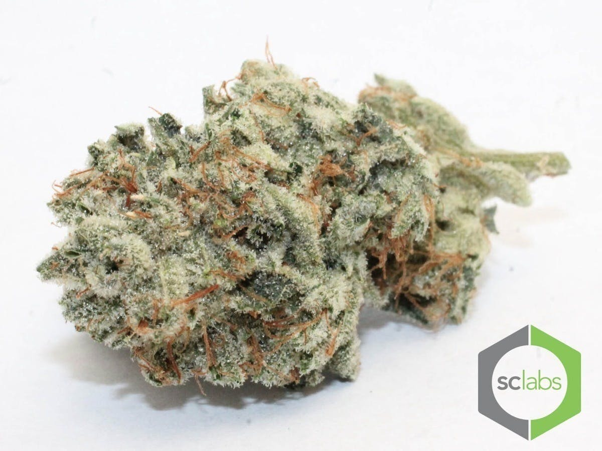 marijuana-dispensaries-1026-w-pacific-coast-wilmington-topshelf-gorilla-glue-5-for-35
