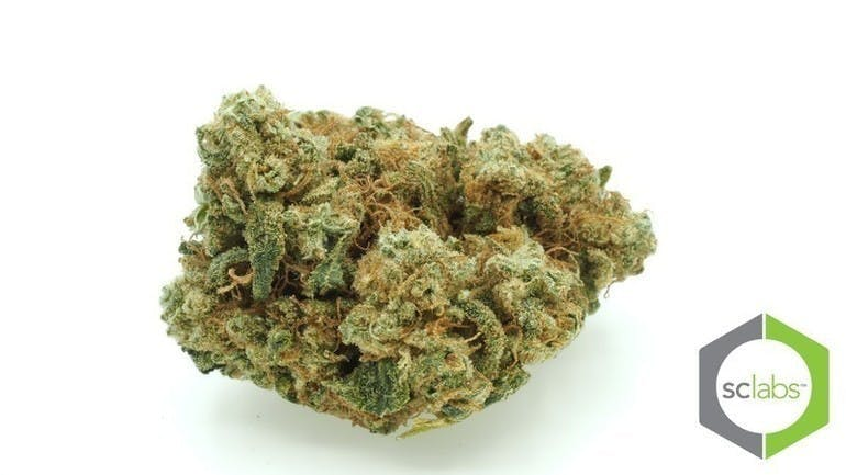 marijuana-dispensaries-1026-w-pacific-coast-wilmington-topshelf-hogs-breath-og-5-for-35