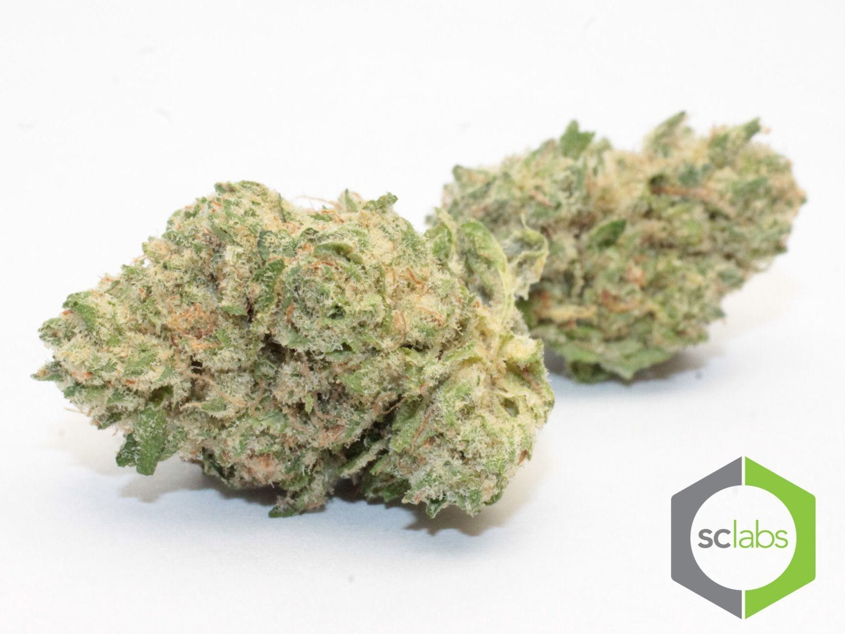 marijuana-dispensaries-1026-w-pacific-coast-wilmington-topshelf-honey-cocaine-og-5-for-35