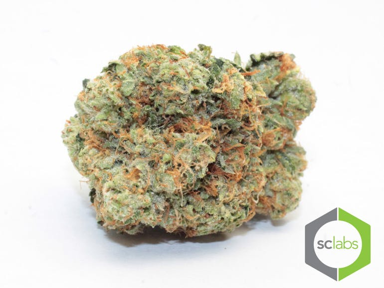 sativa-topshelf-pink-elephant-5-for-35