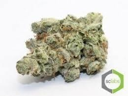 marijuana-dispensaries-1026-w-pacific-coast-wilmington-topshelf-skunk-og-5-for-35