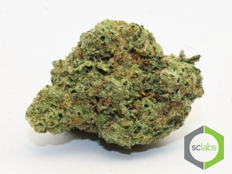marijuana-dispensaries-1026-w-pacific-coast-wilmington-topshelf-supreme-og-5-for-35