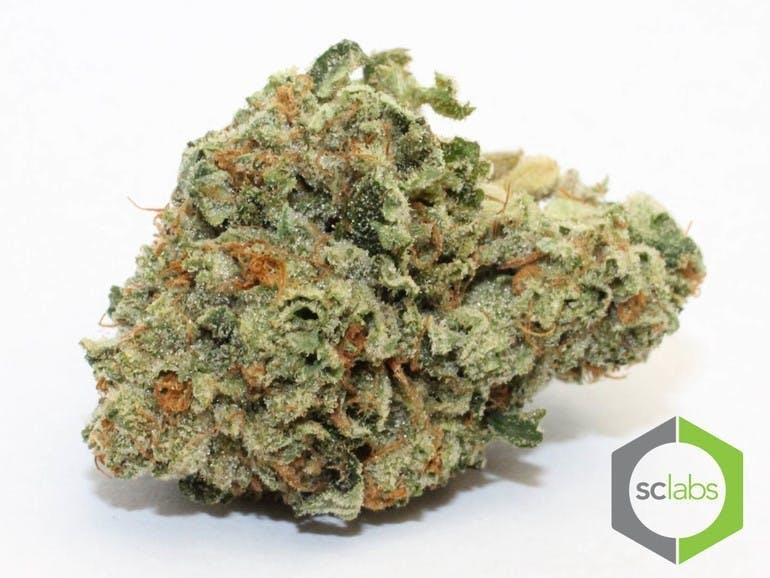 marijuana-dispensaries-1026-w-pacific-coast-wilmington-topshelf-xxx-og-5-for-35