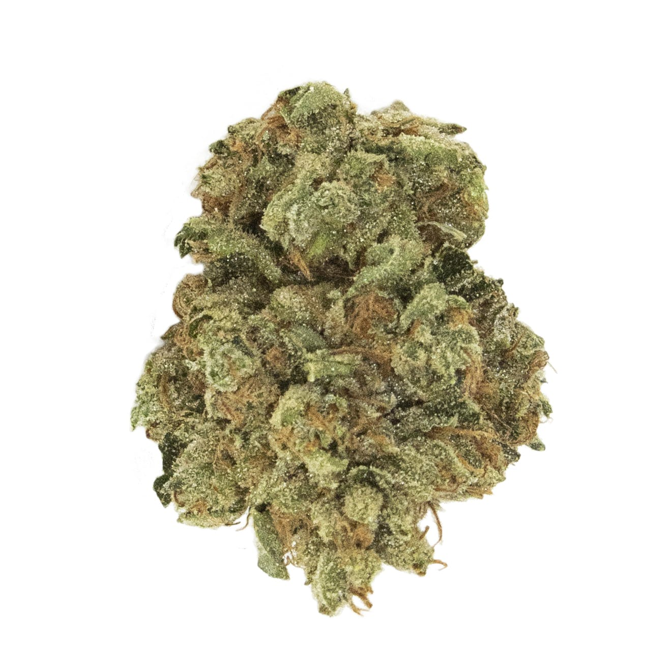 marijuana-dispensaries-3317-keswick-road-hampden-true-kush