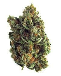 marijuana-dispensaries-green-gears-20-cap-in-los-angeles-vip-banana-og-5g35-2oz310-qp600