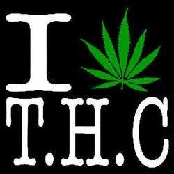 The Healing Center - THC - Medical Marijuana Doctors - Cannabizme.com