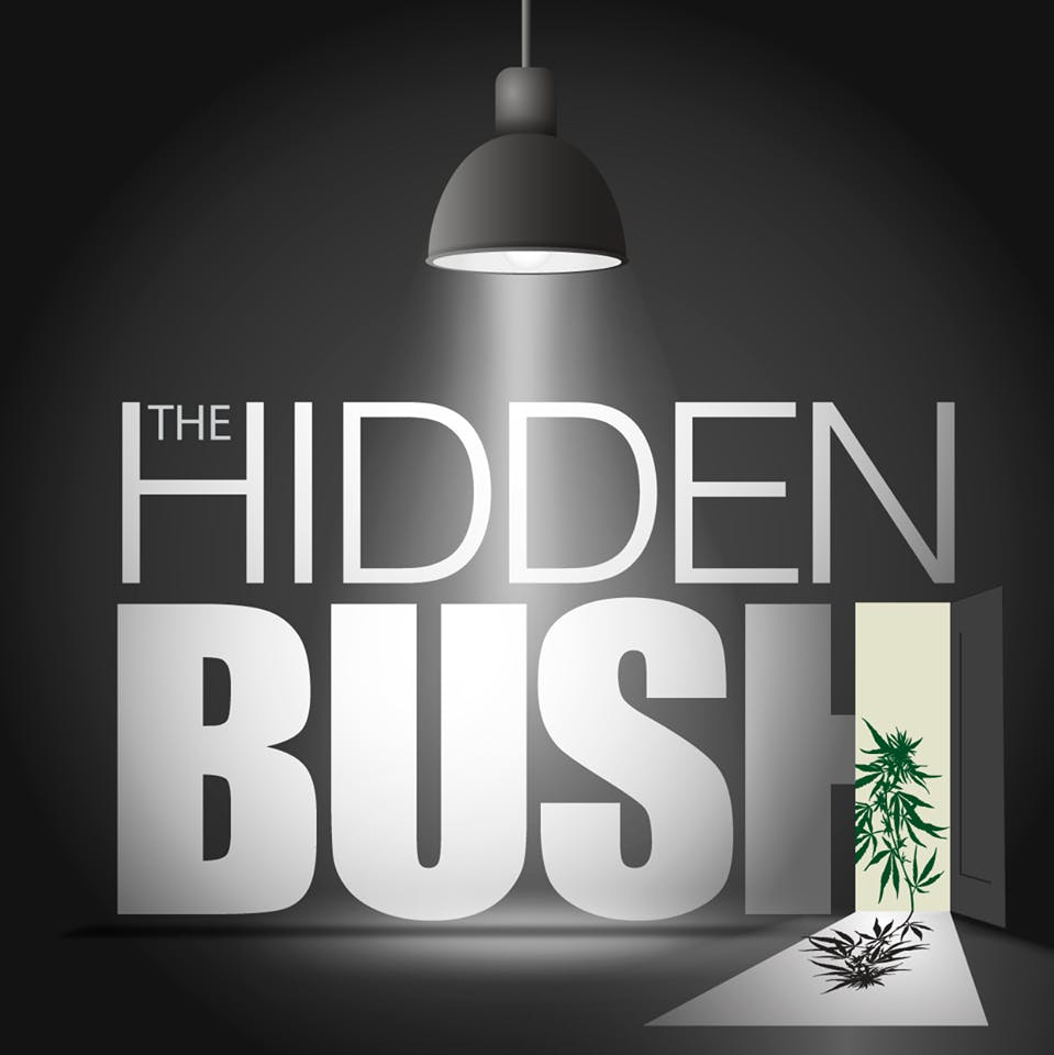 The Hidden Bush - Medical Marijuana Doctors - Cannabizme.com